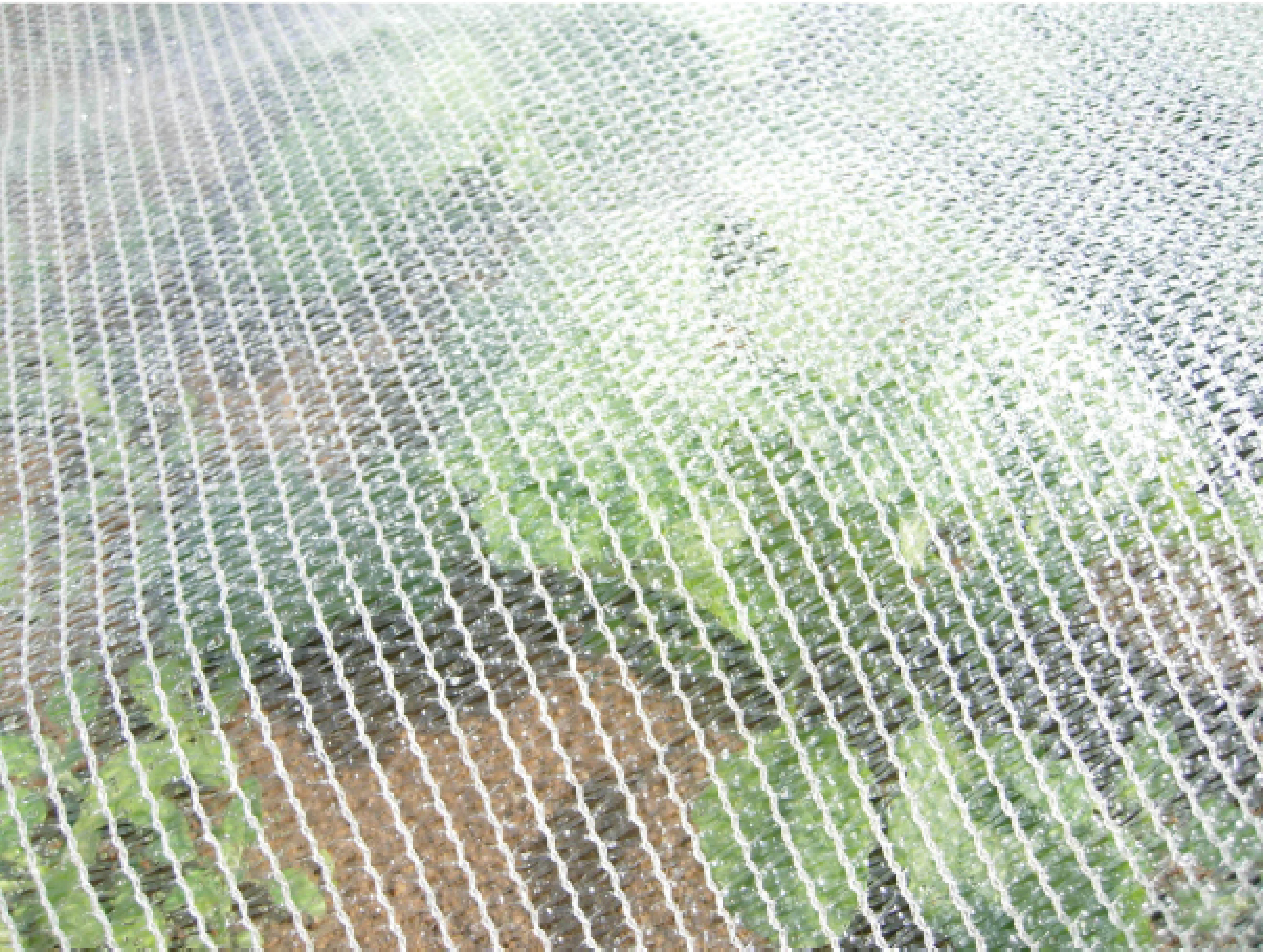 filet climatique et anti insectes degrav 39 agri tout pour produire les fruits rouges et les. Black Bedroom Furniture Sets. Home Design Ideas