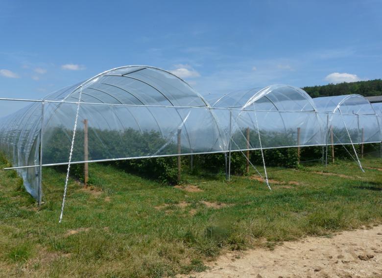 tunnels simples ou jumel s degrav 39 agri tout pour produire les fruits rouges et les asperges. Black Bedroom Furniture Sets. Home Design Ideas
